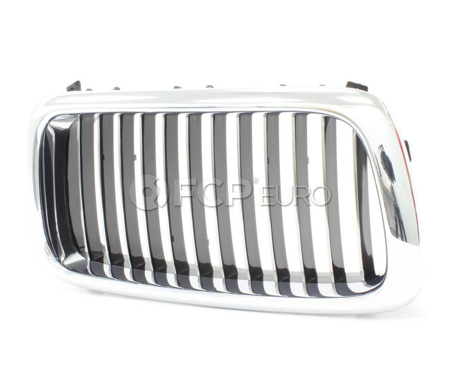 BMW Kidney Grille - Genuine BMW 51138172280