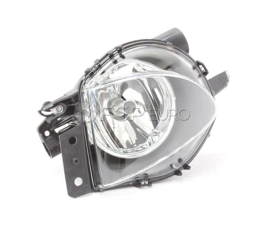 BMW Fog Light Assembly - ZKW 63176948373