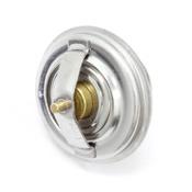 BMW Engine Coolant Thermostat - Borg Warner 423675