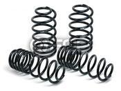 Mercedes Lowering Spring Kit - H&R 295691