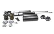 BMW Shock Absorber Kit - 310053KT