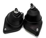 BMW Engine Mount Kit (80A Durometer) - Revshift PMMN5X80A