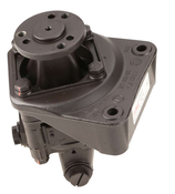 BMW Power Steering Pump - TRW 32411137952