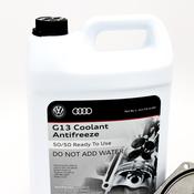 Audi Water Pump Kit - Graf 06E121018AKT2