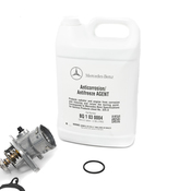 Mercedes Thermostat Kit - Borg Warner 2722000515