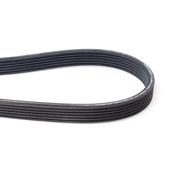 Volvo Serpentine Belt - Contitech 6DK1841
