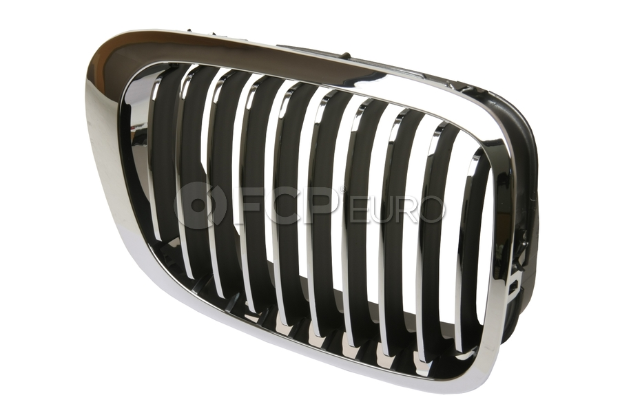 BMW Kidney Grille - EZ 51138208686